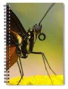 Golden Helicon On Flower Spiral Notebook