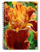 Golden Iris Spiral Notebook