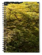 Golden Japanese Maple Spiral Notebook