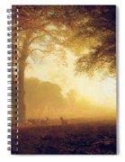 Golden Light Of California Spiral Notebook