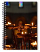 Golden Lights Spiral Notebook