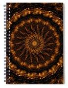 Golden Mandala 1 Spiral Notebook