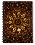 Golden Mandala 6 Spiral Notebook