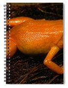 Golden Mantella Spiral Notebook