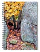 Golden Oak Through Boulders At Elephant Rocks State Park Spiral Notebook