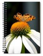 Golden Odyssey Spiral Notebook