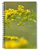 Golden Perch Spiral Notebook