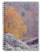 Golden Poplar Among The Rocks At Johnsons Shut Ins State Park Spiral Notebook