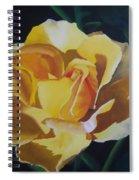 Golden Showers Rose Spiral Notebook