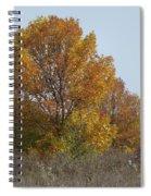 Golden Tree II Spiral Notebook