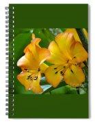 Golden Tropical Flowers Spiral Notebook