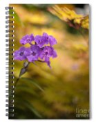 Golden Violets Spiral Notebook