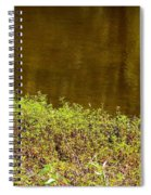 Golden Water's Edge Spiral Notebook