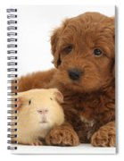 Goldendoodle Puppy And Guinea Pig Spiral Notebook