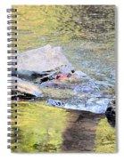 Goldwater Spiral Notebook