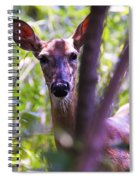 Good Looking Lady Spiral Notebook