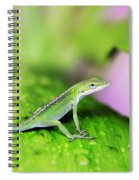 Good To Be Green Spiral Notebook