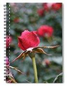 Goose Bumps Spiral Notebook