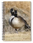 Goose Exercises  Spiral Notebook