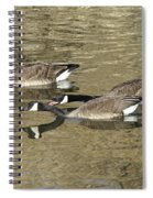 Goose Giving A Warning Spiral Notebook