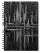 Goose Lake Dusk Spiral Notebook