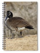 Goose With Head Cocked  Spiral Notebook