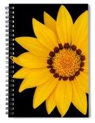 Gorgeous Gazania Spiral Notebook