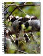 Gossip Birds Spiral Notebook