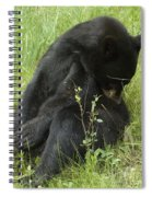 Got An Itch Spiral Notebook