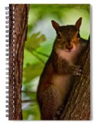Got My Eye On You Spiral Notebook
