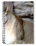 Got You In My Sights Spiral Notebook