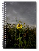 Goth Sunflower Spiral Notebook