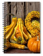 Gourds Against Wooden Wall Spiral Notebook