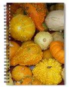 Gourds Galore Spiral Notebook