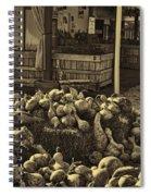 Gourds In Sepia Splendor Spiral Notebook