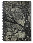 Grabbing Spiral Notebook
