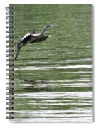 Graceful Landing Spiral Notebook