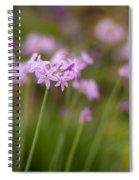 Gracious Stalks Spiral Notebook
