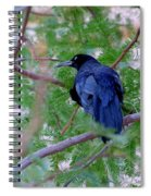 Grackle On A Branch Spiral Notebook