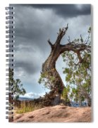 Grand Canyon Facing The Storm Spiral Notebook