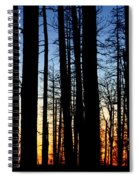 Grand Canyon North Rim Sunset Spiral Notebook
