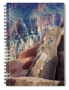 Grand Canyon Roxie Roller Spiral Notebook