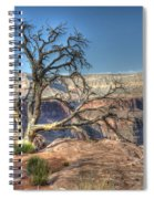 Grand Canyon Tree At Toroweap Spiral Notebook