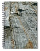 Granite With Quartz Inclusions Spiral Notebook
