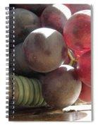 Grape Glow Spiral Notebook