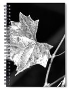 Grape Vine Spiral Notebook