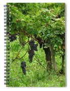 Grape Vines And Roses I Spiral Notebook