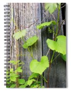 Grape Vines On An Old Barn Spiral Notebook