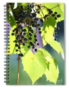 Grapes And Leaves Spiral Notebook
