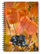 Grapes On The Vine - Vertical Spiral Notebook